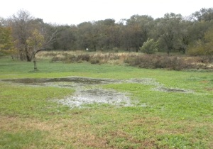"""Eastwick neighborhood flooding, October 2012.  Clearview Landfill in background (small square white sign indicates """"No Trespassing"""").  Photo by Debbie Beer."""