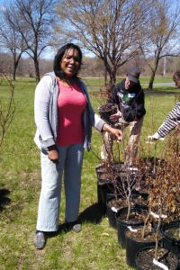 TreePhilly-2015-0411-Joanne Graham -by Debbie Beer